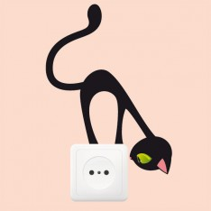 Sticker Prise chat curieux