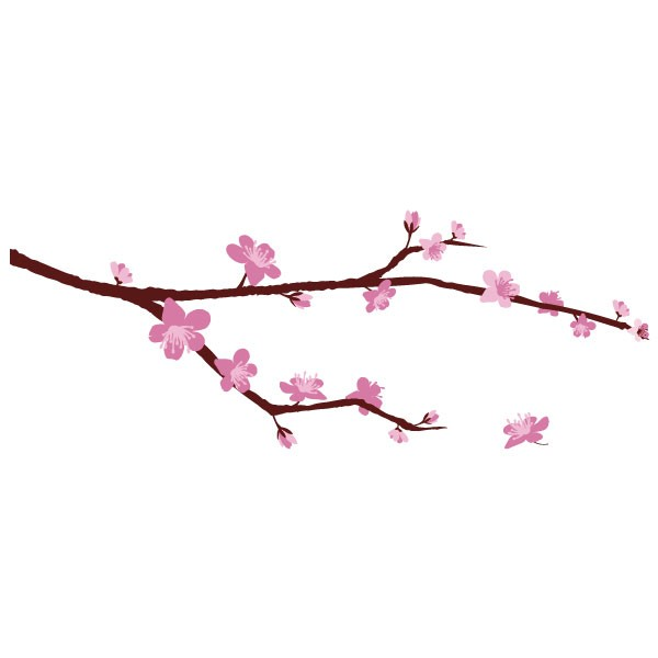 fleurs cerisier japonais dessin. Black Bedroom Furniture Sets. Home Design Ideas
