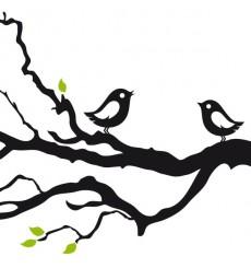 Sticker Branche oiseaux design