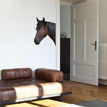 Sticker Tête de cheval réaliste - stickers animaux & stickers muraux - fanastick.com