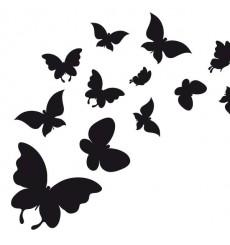 Sticker Envol de papillons