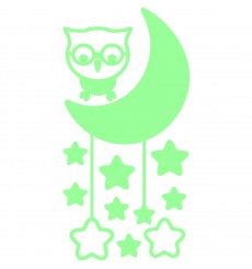Sticker phospho hibou la lune