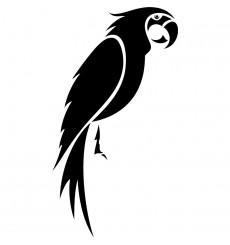 Sticker perroquet perché