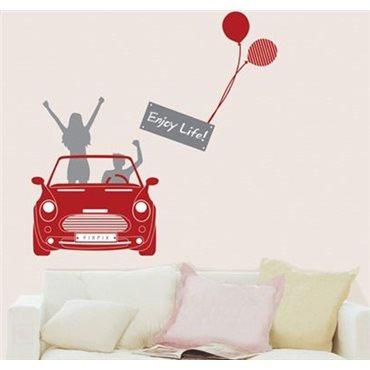 Sticker Voiture de jeunes - stickers voiture & stickers voiture - fanastick.com