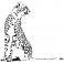 Sticker Guépard - stickers animaux & stickers muraux - fanastick.com