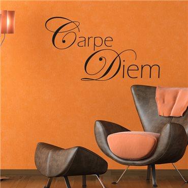 Sticker Carpe Diem - stickers citations & stickers muraux - fanastick.com