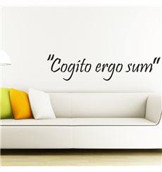 Sticker Cogito ergo sum