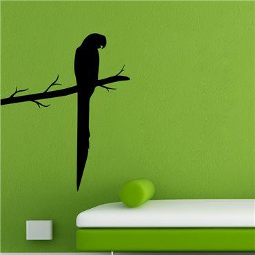 Sticker Perroquet sur une branche - stickers oiseaux & stickers muraux - fanastick.com