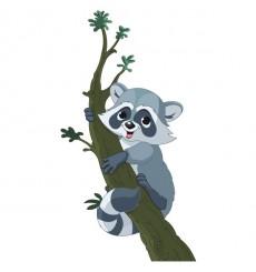 Sticker Raton laveur sur sa branche