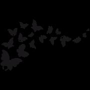 sticker papillons